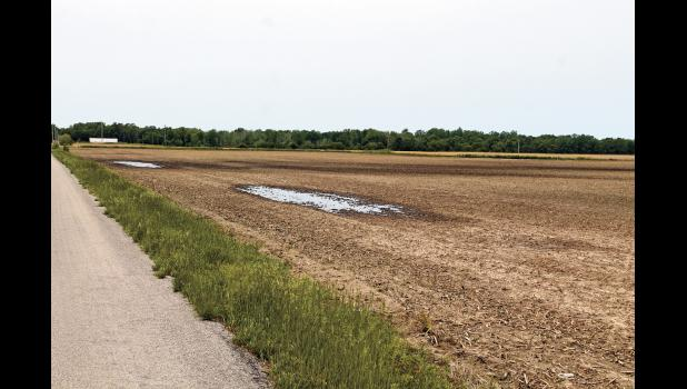 Ponding and wet fields this spring made it almost impossible for farmers to get into the fields to plant. Because of the saturated fields Gov. Holcomb is asking for 88 counties to be declared a disaster.